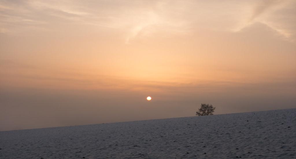 Sonne taucht aus Nebel auf